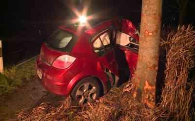 Nicht angeschnallt gegen Baum geprallt: Autofahrer stirbt trotz sofortiger Rettungsmaßnahmen noch am Unfallort: Auto war von Straße abgekommen und seitlich mit Beifahrerseite gegen Baum geprallt - Ersteintreffende Feuerwehr reanimierte Autofahrer - Notarzt kann nur noch den Tod feststellen