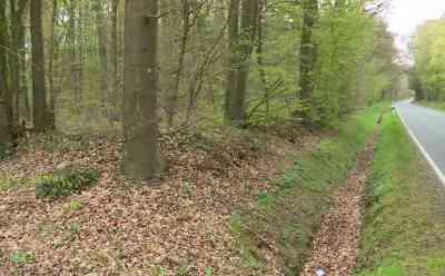 Leichenfund im Wald: Vermisste Frau aus Padenstedt tot aufgefunden: Frau war seit Ende Februar vermisst worden - Leiche des tatverdächtigen Ehemannes wurde im März an Bahnstrecke gefunden - Fundort weiträumig abgesperrt - Spurensicherung im Einsatz - Landstraße voll gesperrt